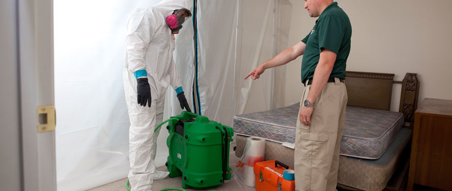 Garland, TX mold removal process